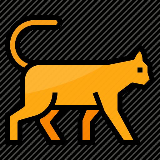 animals, cat, mammal, pet icon
