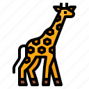 animals, giraffe, wild, zoo icon