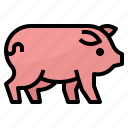 animals, farm, mammal, pig icon
