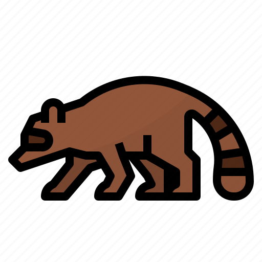 animals, mammal, raccoon, zoo icon