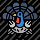 animals, bird, turkey, wild icon