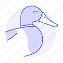animal, birds, duck, fauna, vertebrate, waterfowl icon