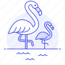 animal, bird, birds, fauna, flamingo, flamingos, vertebrate, wading icon