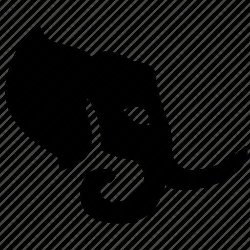 animal, elephant, face, head icon