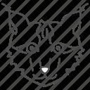 coon, face, feline, lynx, siamese icon