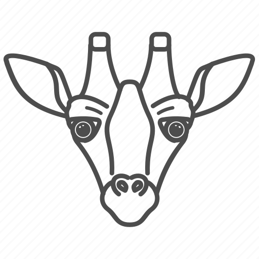 africa, animal, animals, face, giraffe, wildlife, zoo icon