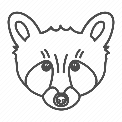 animal, coon, face, nature, raccoon, wildlife icon