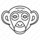 animal, animals, chimp, chimpanzees, face icon