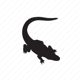 animals, crocodile icon