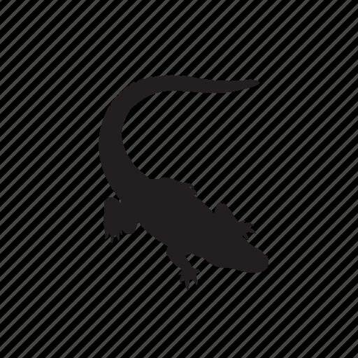 animals, crocodile icon