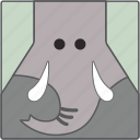 animal, big elephant, elephant, elephant face icon