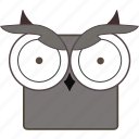 animal, bird, chat, owl, owl face icon