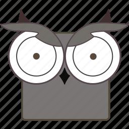 animal, bird, chat, owl, owl face icon
