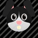 animal, bunny, domestic, face icon, farm, hare, pet icon