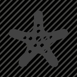 ocean, sea, shell, shells, star, starfish, summer icon