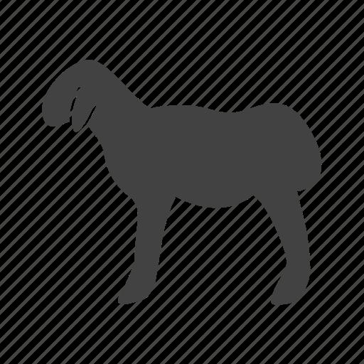 Animal, domestic, farm, mammal, sheep, vertebrate, wool icon - Download on Iconfinder