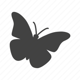 ant, bee, beetle, bug, insect, ladybug, wings icon