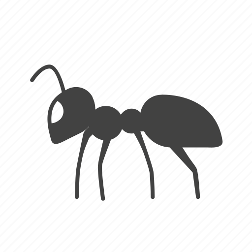 Ant, beetle, bug, fly, insect, pest, termite icon - Download on Iconfinder