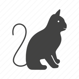 cat, cats, kitten, kitty, pussy cat, wild cat icon