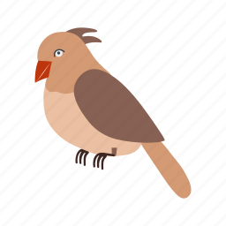 animal, birds, flight, flock, flying, nature, sparrow icon