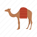camel, camels, desert, desert animal, egypt, sand icon