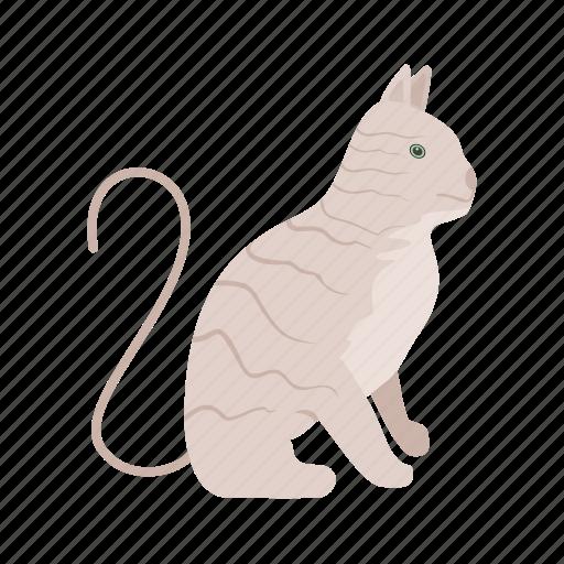 animal, cat, cats, kitten, kitty, pussy cat, wild cat icon