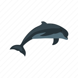 animal, beautiful, blue, dolphin, jump, nature, ocean icon
