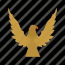 bird, eagle, falcon, flight, sky, wing