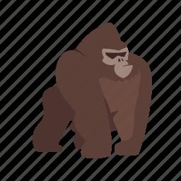 africa, animal, gorilla, gorillas, monkey, monkeys, mountain icon