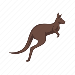 animal, australia, brown, kangaroo, kangaroos, pouch, wildlife icon