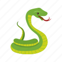 bite, cobra, king, nature, poison, snake, wild icon