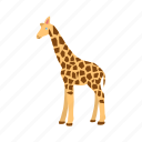 africa, animal, giraffa, giraffe, mammal, wildlife, zoo icon
