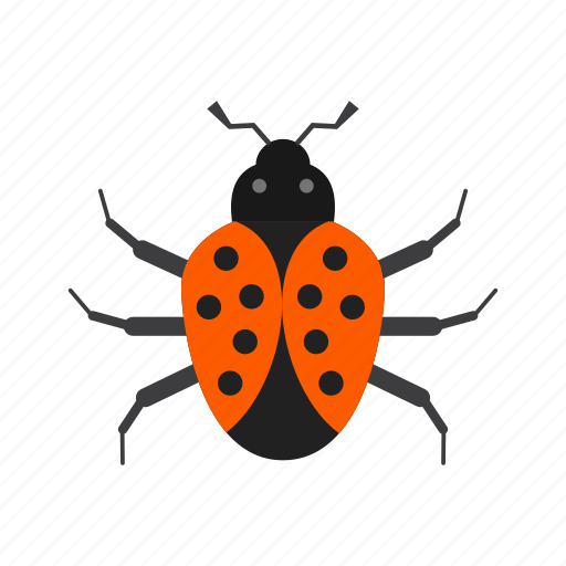 beetle, bug, crawler, insect, ladybug, pest, termite icon