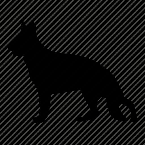 animal, animals, cute, dog, pet icon