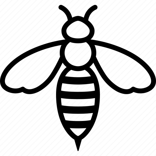 bee, honey, honeybee, insect, killer, wasp, worker icon
