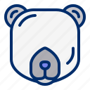 animal, bear, polar, wildlife icon