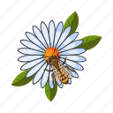 bee, flower, insect, nectar, plant icon