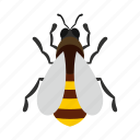 bee, beehive, farm, honey, honeycomb, natural, nature icon