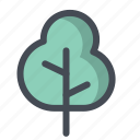 agriculture, forest, grow, growth, nature, plant, tree icon