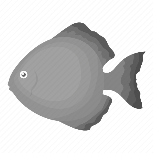 Animal, aquarium, exotic, fish, moon, tropic, view icon - Download on Iconfinder