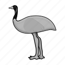 australia, bird, emu, nature, ostrich icon