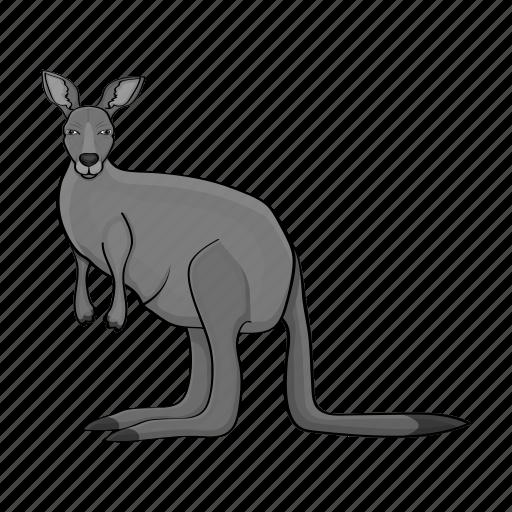 animal, kangaroo, mammal, marsupial, nature, wild, zoo icon