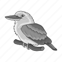 animal, australian, bird, ecology, kookaburra, nature icon