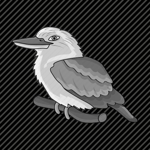 animal, australian, bird, ecology, kookaburra, nature icon
