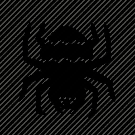 Bug icon, spider, tarantula icon - Download on Iconfinder