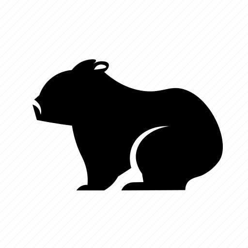 Australia, mammal icon, wombat icon - Download on Iconfinder