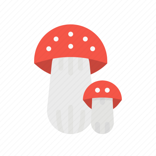 Food, fungi, mushroom, vegan, vegetarian icon - Download on Iconfinder
