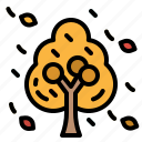autumn, fall, foliage, leaf, tree icon