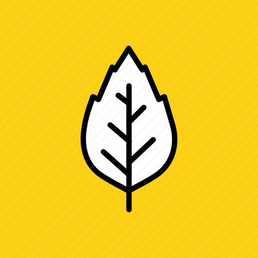 autumn, birch, elm, fall, leaf, nature, oak icon