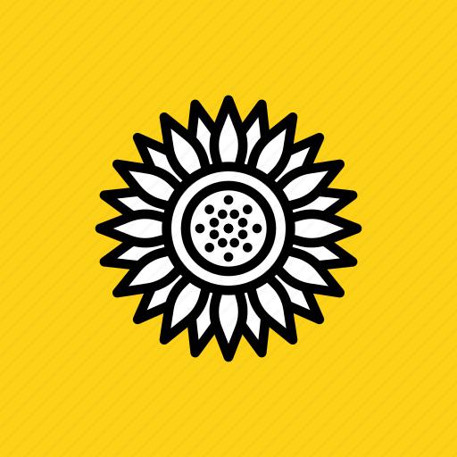 Blossom, chrysanthemum, daisy, flower, spring, sunflower, thanksgiving icon - Download on Iconfinder